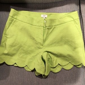 Crown and ivy scalloped shorts